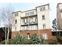 A STUNNING 2 BEDROOM 2 BATHROOM APARTMENT WITH BALCONY AND UNDERGROUND PARKING LOCATED IN WHETSTONE