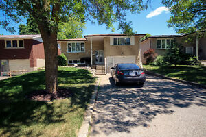 Room for rent in home near UW and Accelerator Centre Kitchener / Waterloo Kitchener Area image 1