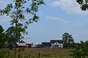 100 Acre Farm North West of Greater Napanee