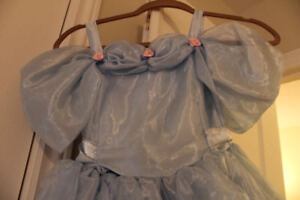 Robe de Cendrillon - Costume d'Halloween