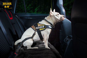 Dog Harnesses - Easy to fit and adjustable harnesses - Julius K9 Downtown-West End Greater Vancouver Area image 6