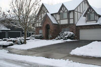 Lion's Landscape Inc. Residential & Commercial Snow Removal