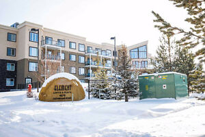 One Bedroom Condo in Sherwood Park