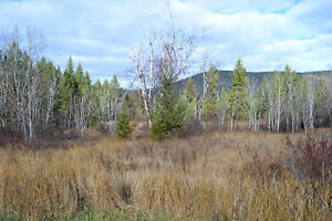 Great Building Lot on South Lakeside Williams Lake Cariboo Area image 5