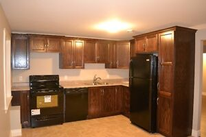 2 Bedroom Basement Apartement for Rent July 1st in Paradise