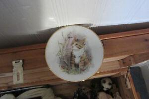 older cat plate