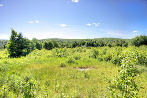 REDUCED PRICE! PANORAMIC VIEW ON 10 ACRES, BANCROFT ON Peterborough Peterborough Area image 4