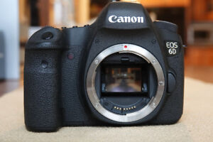 Canon 6D & accessories