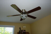 Milano Collection 48 inch Ceiling Fan and Light