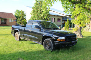 2003 Dodge Dakota Stampede Pickup Truck