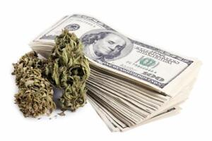 Investors Wanted for the Marijuana / Weed Grow-Op Industry! Be apart of a BIG operation! - Dispensary