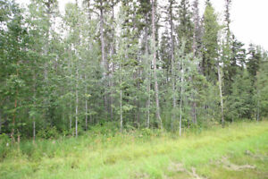 LAND FOR SALE - HEATHER DOWNS, RURAL LAC ST. ANNE