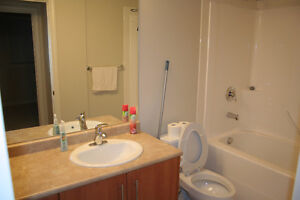 Executive Two Bedroom Two Bathroom Condo for Rent in Downtown
