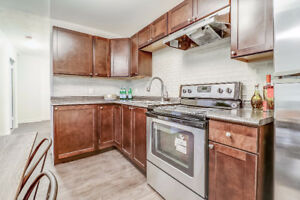 Newly renovated 1 Bedroom available $1149