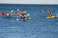 Kayaking and Stand-up Paddleboard Lessons at Lake Newell, Brooks