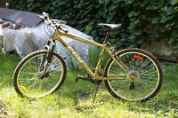 Vélo CCM Scout 21 Mountain Bike - With Quality Lock & Tools