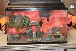 10 gallon glass aquarium London Ontario image 1