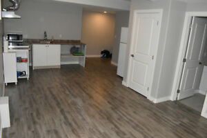 Double bedroom basement for rent single person or small family