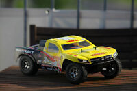 1/16-Scale Brushless RTR Short Course Truck Rockstar Team LOSI