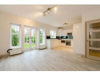 OSSULTON WAY N2: THREE DOUBLE BEDROOMS - LARGE RECEPTION - TWO BATHROOMS - MODERN KITCHEN - GARDEN