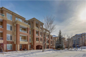 Central Calgary Condo for Sale *MASSIVELY REDUCED PRICE!
