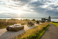 Volunteer at the Cobble Beach Concours d'Elegance