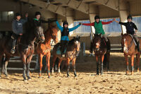 Summer Camp Horseback Riding Lessons