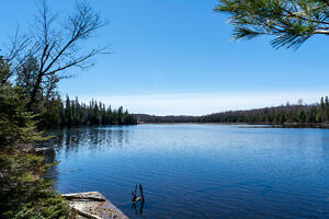*OPEN HOUSE* MAGNETAWAN RIVER COTTAGE OR HOME ON 2.79 ACRES