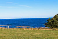 Ocean View Land in Pouch Cove
