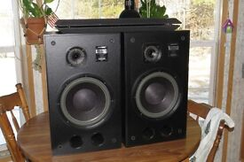 Bose Interaudio 4000XL Speakers