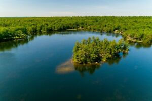 Real Estate - Island Big Bald Lake on Trent Severn Waterways