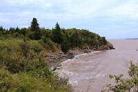 Waterfront 1200 feet on ocean - 61+ acres! Bay of Fundy, NB