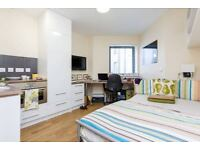 Gorgeous Double Studio flat in Baker St Available Now