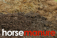 Horse Manure Well Aged, Organic All Natural