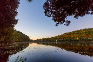 Terrain à vendre au Lac Jackson - LA BELLE VUE, en montagne