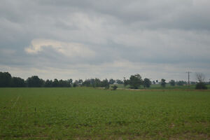 Vacant Farming Land FOR SALE