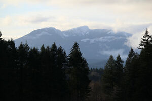 1 Acre Property with Mountain Views Comox / Courtenay / Cumberland Comox Valley Area image 10