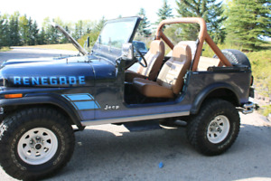 1984 Jeep Renegade CJ7