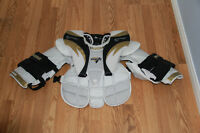 Goalie pads, skates, helmet, chest protector and sticks
