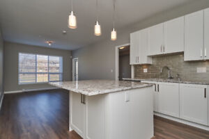 Brand new Two bedrooms condo for rent