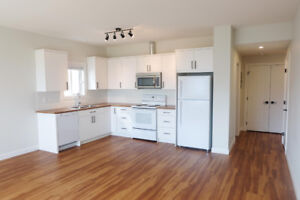 New 1 BDRM Basement Suite in Sun Rivers With View