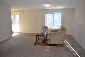 1BR Furnished Walkout Basement Short Term Rent (daily/weekly)