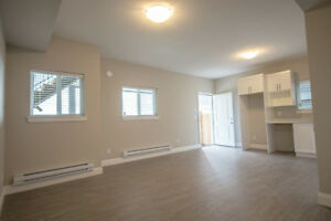 Gorgeous view! New Coquitlam Burke Mountain 2 bedroom walkout