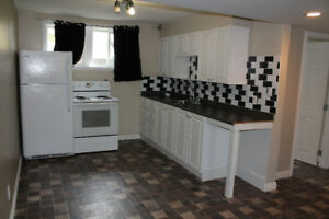 Spacious newer 1 bedroom basement suite