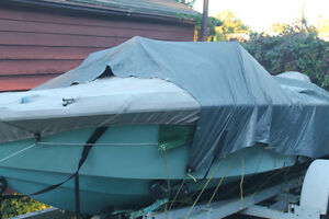 Boat with motor and trailer for sale