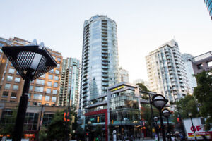 $2300 / 1br - *New Price* 1 Bd/ 1 Bth - downtown fully furnished