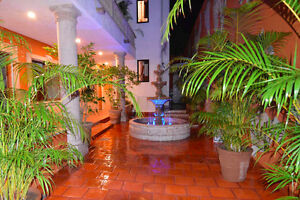 Platinum Standard, pet friendly condo in Puerto Vallarta, MX