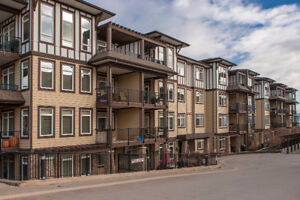 2bed+ den, 2bath upgraded condo with mountain and lake view.