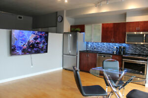 Available May 1: All Inclusive Furnished One Bedroom Condo