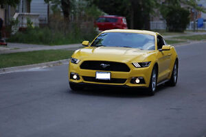 Ford Mustang 2015 Ecoboost - Excellent Condition
